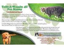 Tails-a-Waggin 4U Dog Walker, Pet Sitter, Dog Runner