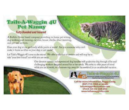 Tails-a-Waggin 4U Dog Walker, Pet Sitter, Dog Runner is a Pet Sitting service in Arlington Heights IL