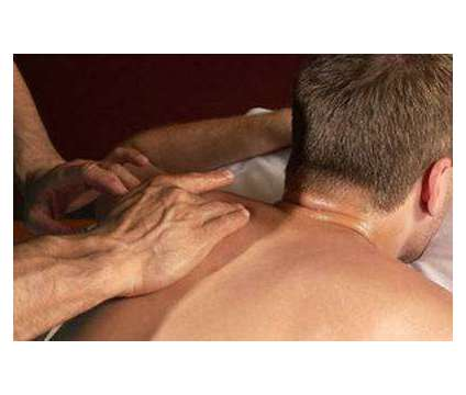 Therapeutic Massage and Bodywork by Jose is a Massage Services service in Fort Lauderdale FL