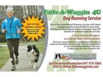 Tails-a-Waggin 4U Pet Sitter, Dog Walker, Cat Sitter Arlington Heights, IL