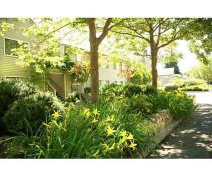 1 Bed - Riverwood Apartments at 2942 Soscol Avenue in Napa CA is a Apartment