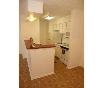 1 Bed - Cielo Ranch at 3829 Gannon Lane in Dallas TX is a Apartment