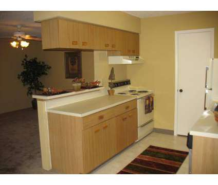 1 Bed - Park Place Port Richey at 9310 Valley View Ln in Port Richey FL is a Apartment