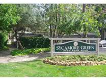 1 Bed - Sycamore Green