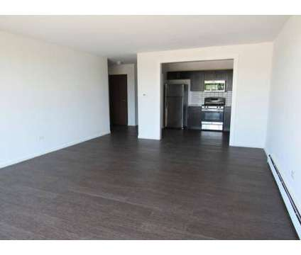 1 Bed - Northgate Apartments at 900 N Rohlwing Rd in Addison IL is a Apartment