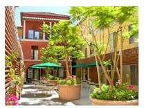 Studio - Atrium Garden Studio Apartments