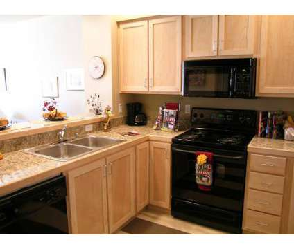 Studio - Capitol Steps at 623 Eastside St Ne in Olympia WA is a Apartment