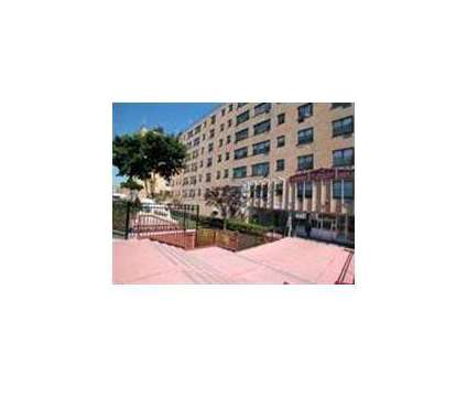 Studio - New Haven Place at 451 Fulton Ave in Hempstead NY is a Apartment