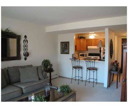 1 Bed - Village Grove Apartments, Eligible Seniors 62+ at 1133 Cheekwood Dr in Elk Grove Village IL is a Apartment