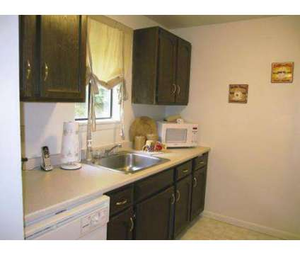 Albany Apartments For Rent Albany Ny Apartment Rentals Zillow 2015 Personal Blog