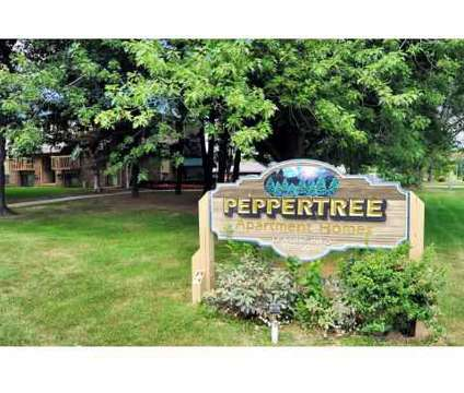 1 Bed - Peppertree Apartments at 1842 S 11th St in Kalamazoo MI is a Apartment