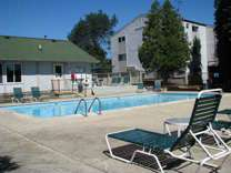 1 Bed - Pines West Apartments
