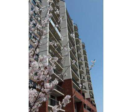 1 Bed - The Regency at 800 Pleasant St in New Bedford MA is a Apartment