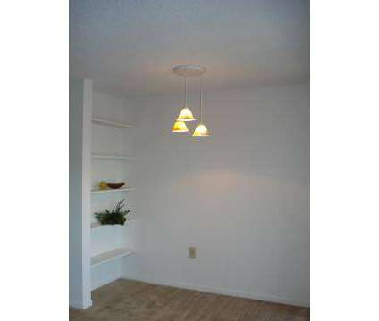 1 Bed - Chesapeake at 2307 Cumberland Cir in Clearwater FL is a Apartment