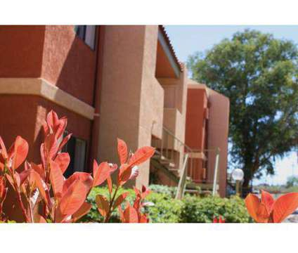 1 Bed - Mission Sierra Apartments at 2410 South Mission Rd in Tucson AZ is a Apartment