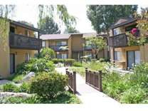 1 Bed - Pine Creek Village