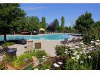 1 Bed - Palomino Park Resort