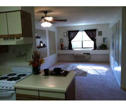 1 Bed - The Bluffs Apartments at 305 Montifiore St in Lafayette IN is a Apartment