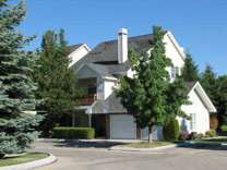 1 Bed - The Birches At Brandt's Landing