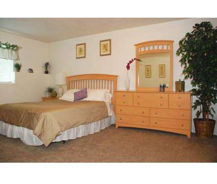 1 Bed - Thorneberry Apartments at 203 West Center St in Pleasant Grove UT is a Apartment
