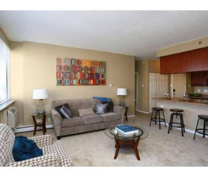 Studio - Village in the Park at 1417 Valley Lake Dr in Schaumburg IL is a Apartment