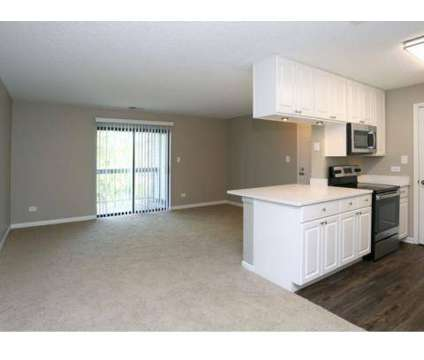 1 Bed - The Pointe at 1601 W Woods Drive in Arlington Heights IL is a Apartment