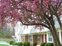 2 Beds - Old Mill Townhomes