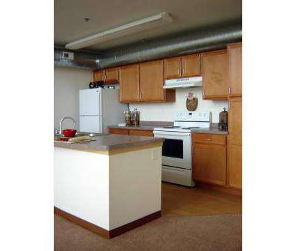 1 Bed - Blue Ribbon Loft Apartments at 901 W Winnebago St in Milwaukee WI is a Apartment