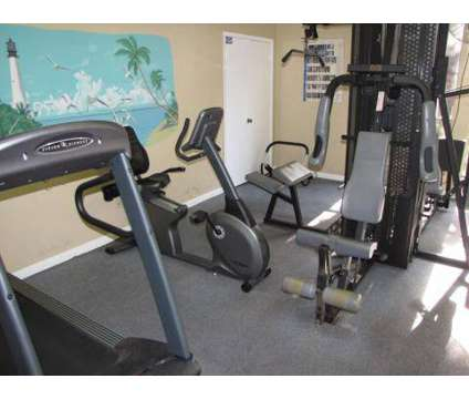 Studio - Lighthouse Bay Apartment Homes at 5055 S Dale Mabry in Tampa FL is a Apartment