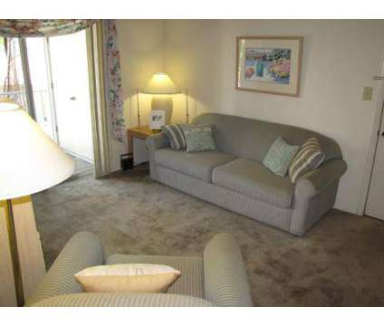 1 Bed - Lighthouse Bay Apartment Homes at 5055 S Dale Mabry in Tampa FL is a Apartment