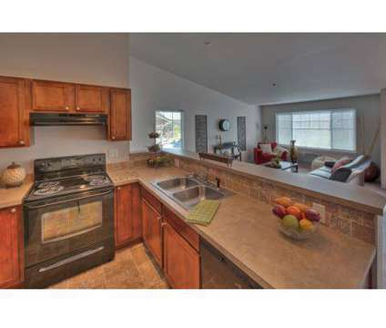 1 Bed - Northstar Lodge at 6614 North Cedar Rd in Spokane WA is a Apartment