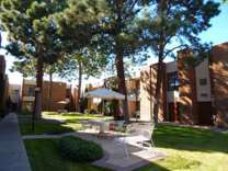 1 Bed - Executive West Apts