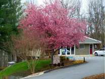 1 Bed - Old Mill Townhomes