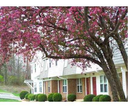 1 Bed - Old Mill Townhomes at 725 Mill Stream Ln in Lynchburg VA is a Apartment