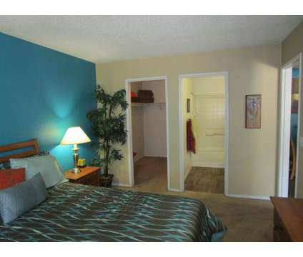 1 Bed - Playa Vista at 3700 E Bonanza Rd in Las Vegas NV is a Apartment