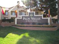 1 Bed - Palm Villas Apartments