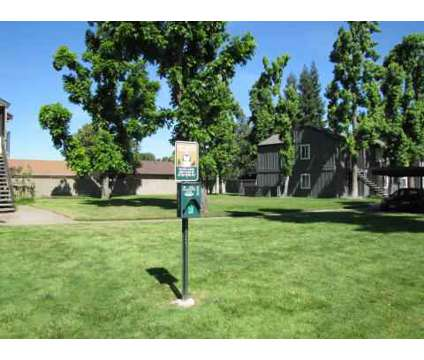 1 Bed - The Vineyards at 835 West Harney Ln in Lodi CA is a Apartment