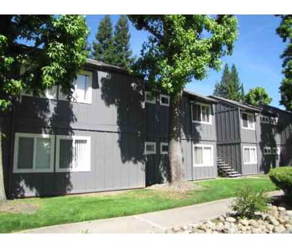 2 Beds - The Vineyards Apartments at 835 West Harney Ln in Lodi CA is a Apartment