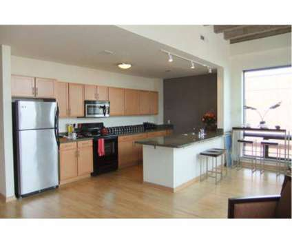 1 Bed - South Water Works Milwaukee Apartments at 235 E Pittsburgh Avenue in Milwaukee WI is a Apartment