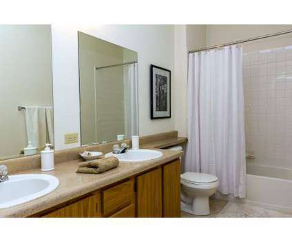1 Bed - Western Terrace at 1041 Palacio View in Colorado Springs CO is a Apartment