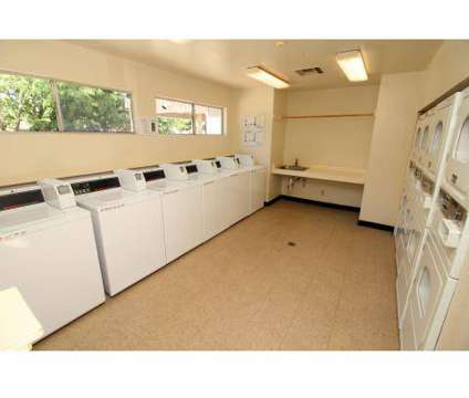1 Bed - Sycamore Village at 400 W Central Ave in Tracy CA is a Apartment