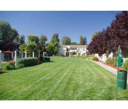 1 Bed - Parkside Brentwood - Northern California at 200 Village Dr in Brentwood CA is a Apartment