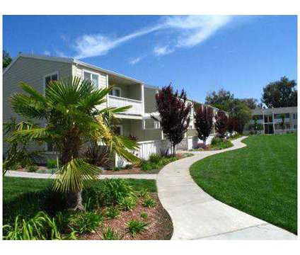 1 Bed - Parkside Brentwood at 200 Village Dr in Brentwood CA is a Apartment