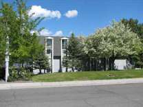 2 Beds - The Falls Apts / Pheasant View TH