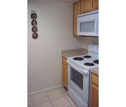 1 Bed - La Vista Oaks Apartments at 12771 St James Place Drive in Tampa FL is a Apartment
