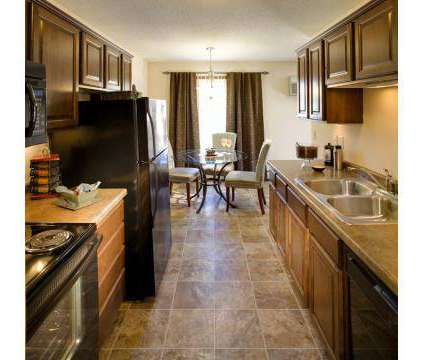 1 Bed - At The Lake at 2500 Nathan Ln N in Plymouth MN is a Apartment