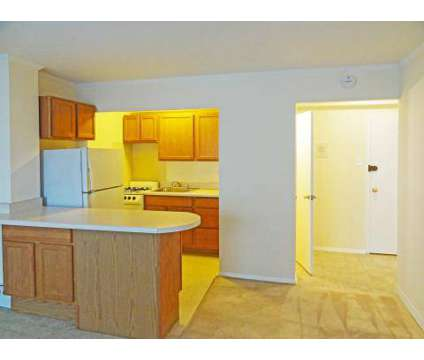 1 Bed - 850 Argyle Place Apartments at 840-850 W Argyle St in Chicago IL is a Apartment
