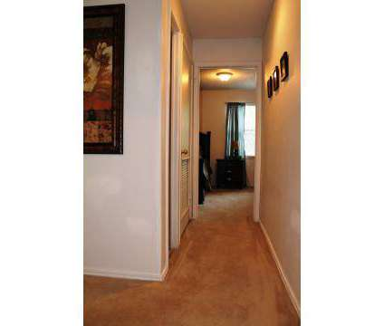 1 Bed - The Ethans at 8300 N Hickory St in Kansas City MO is a Apartment