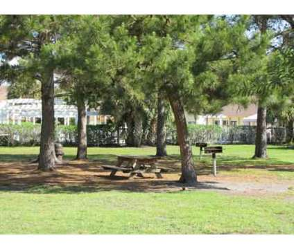 2 Beds - Pointe Sienna at 7200 Powers Ave in Jacksonville FL is a Apartment