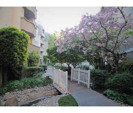 1 Bed - Park Regency Apartments at 3128 Oak Rd in Walnut Creek CA is a Apartment